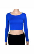 cropped-blue